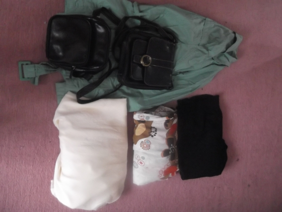 Day 7: Take five items of clothing to Goodwill (charity shop)